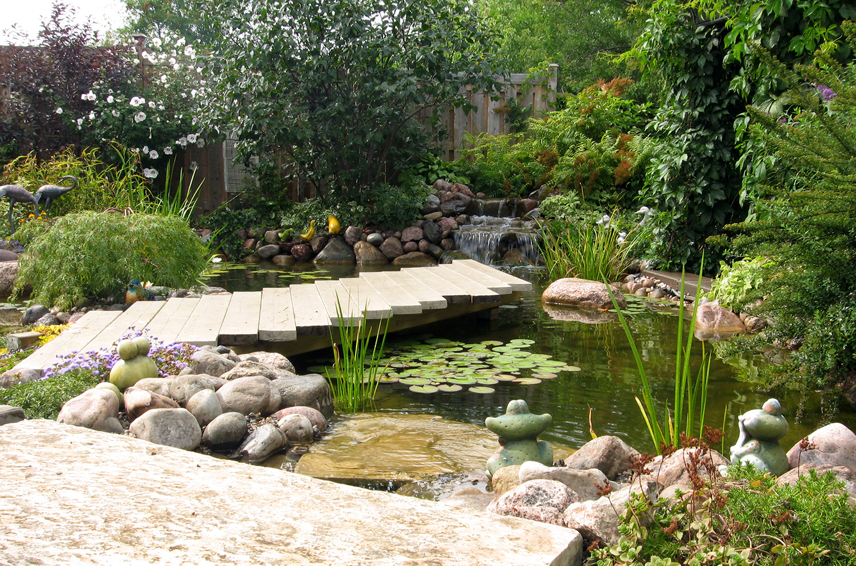 Water Landscapes July Ponds